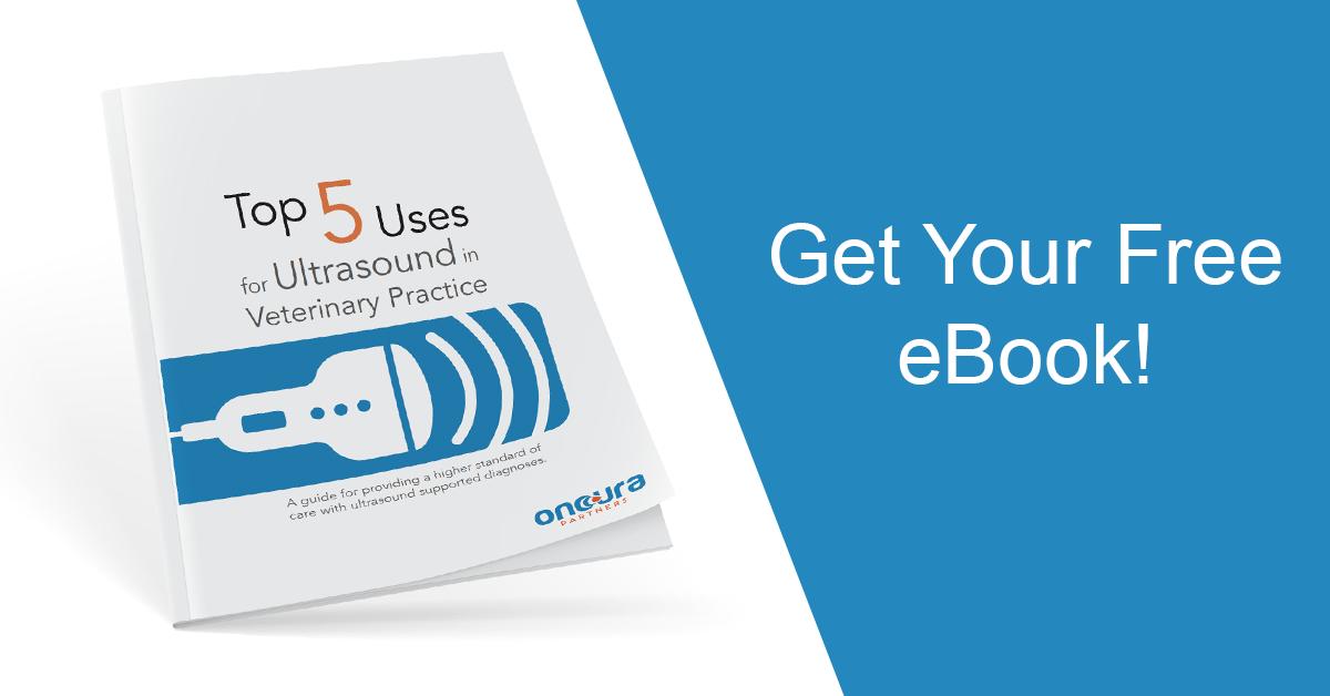 Top 5 Uses for Ultrasound eBook Promo_FB_LI